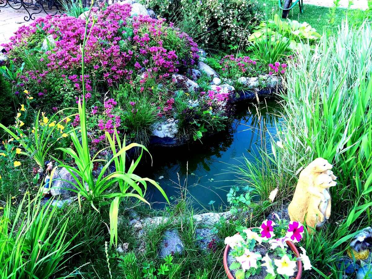 Искусственные водоемы, пруды