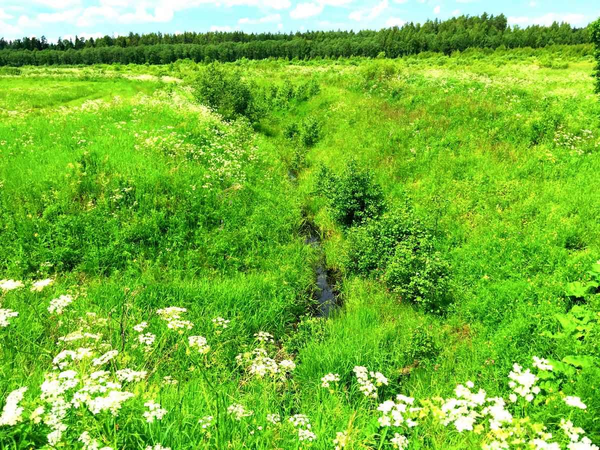 Мелиорация сельскохозяйственных земель