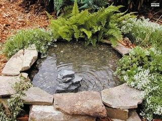 Декоративные пруды для дачи (водоемы)