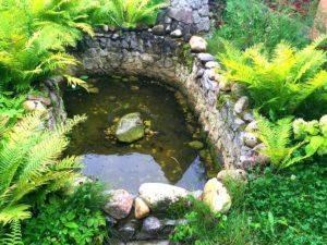 Декоративные пруды