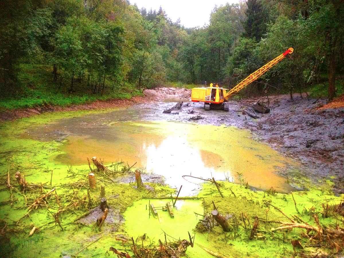Как самостоятельно очистить пруд Как очистить пруд от водорослей 66