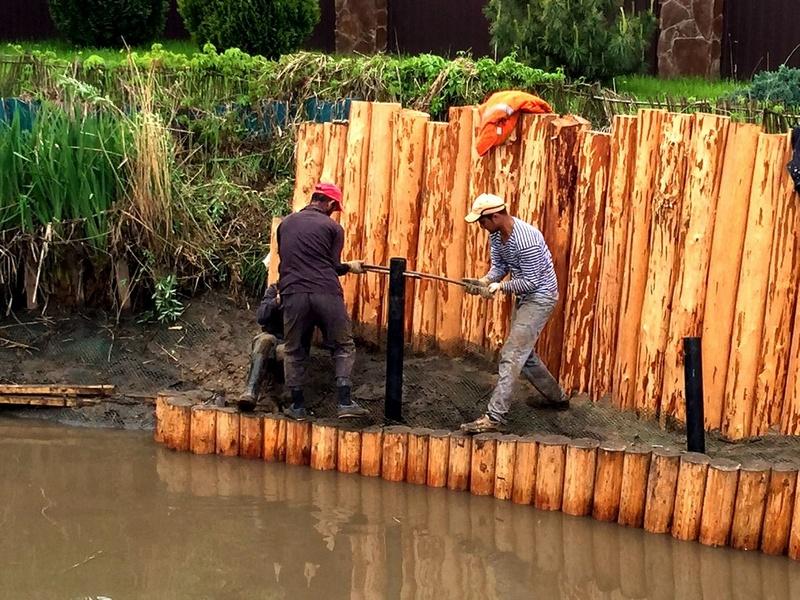 Укрепление берегов лиственницей своими руками 24