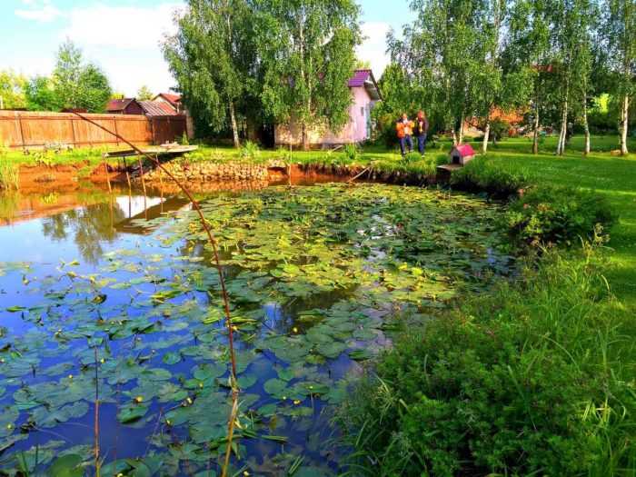 Очистка и берегоукрепление пруда в Сергиево-Посадском районе (МО, д.Слотино)