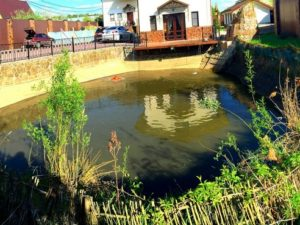 Очистка и берегоукрепление пруда в Егорьевском районе (МО, с.Михайловское)