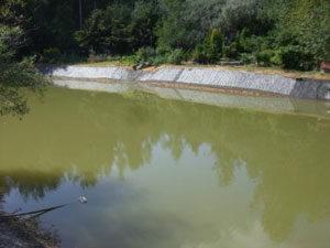 Укрепление берегов водоёмов