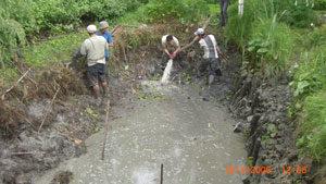 Очистка прудов, водоёмов