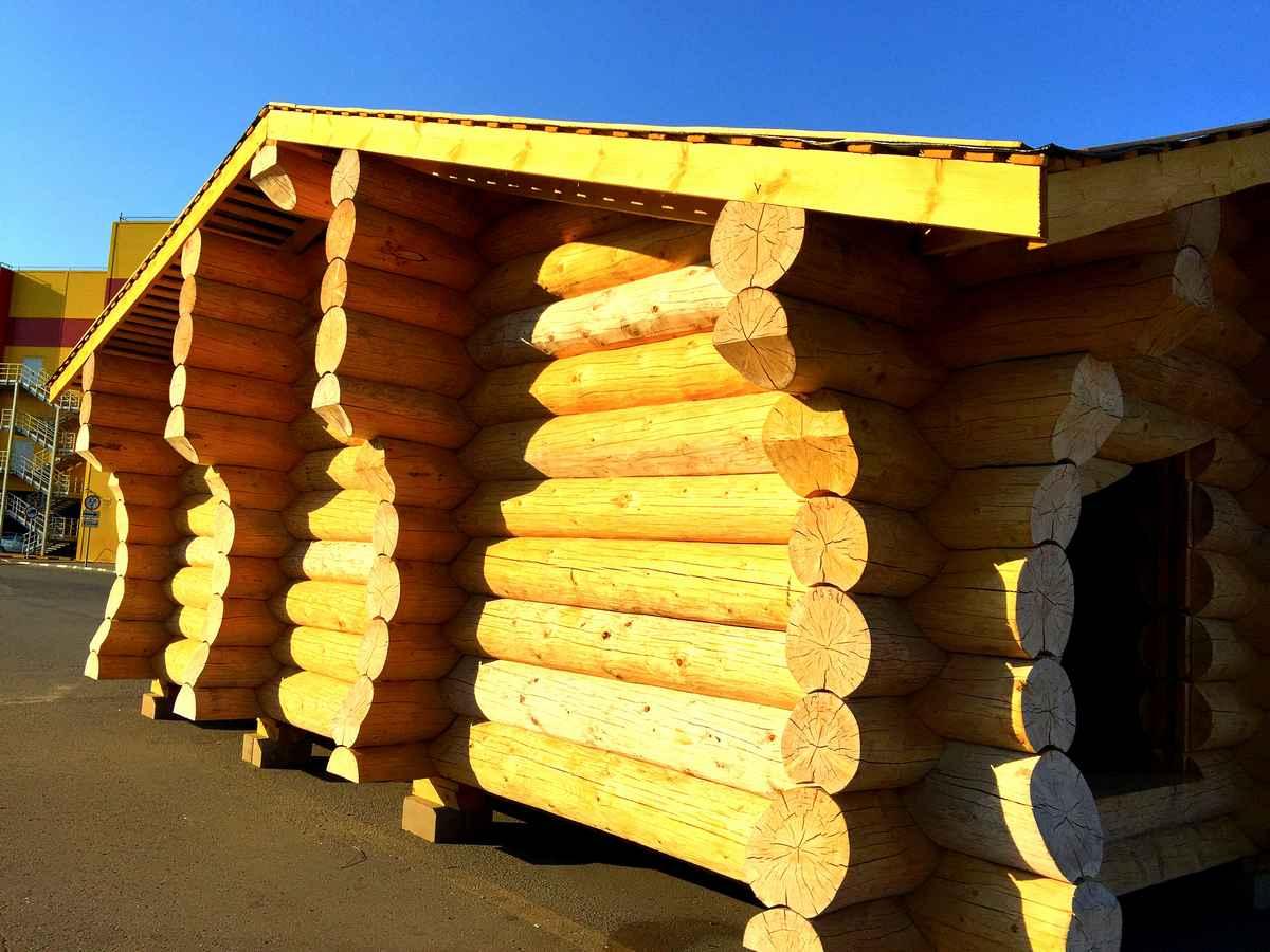 Деревянный дом должен быть только из лиственницы