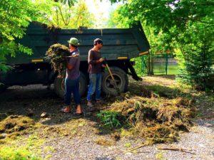 Очистка и укрепление берега в Наро-Фоминском районе (МО, д.Новоглагольево)