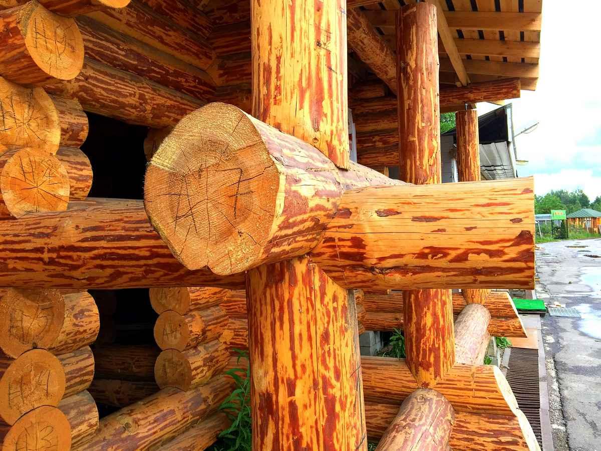 Особенности обработки древесины лиственницы
